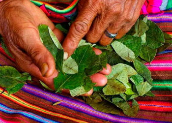 Rituales Y Ceremonias Andinas