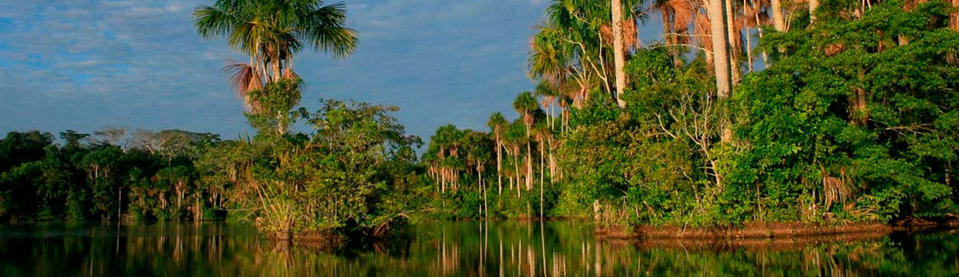 Espiritualidad Andina Amazonica